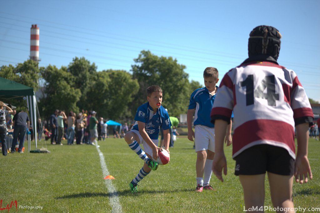 1° Sesto Rugby Fest